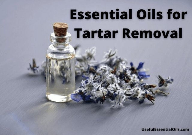 Essential Oils for Tartar Removal